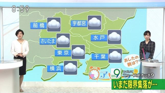 上原光紀 NHKニュース7 首都圏ニュース 即位礼正殿の儀 14