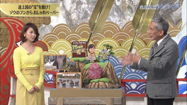 未秋元玲奈 来世紀ジパング アートフェア東京2017 12