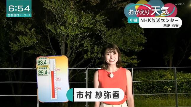 市村紗弥香 首都圏ネットワーク 2