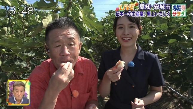 望木聡子 旅サラダ 8