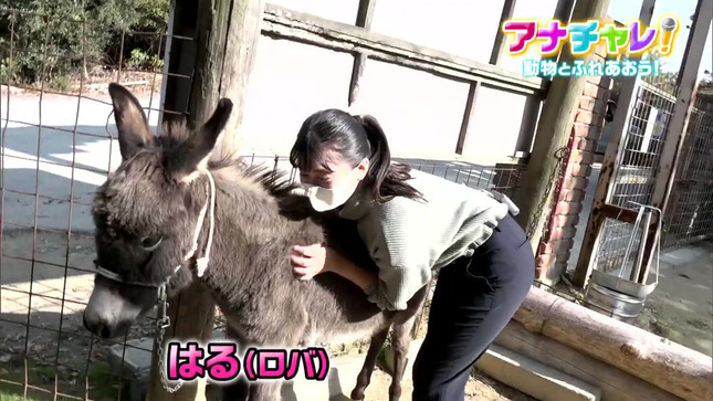 瀧川奈津希 アナチャレ! 4