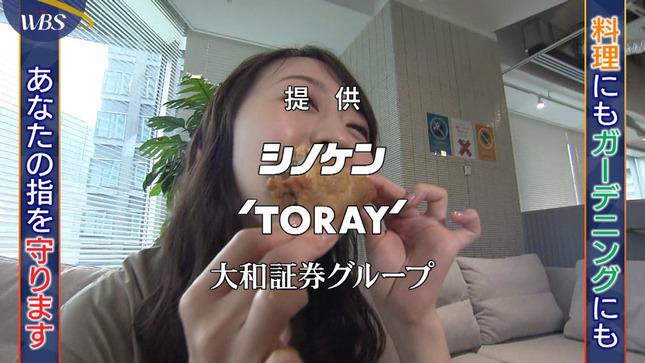 片渕茜 ワールドビジネスサテライト 4