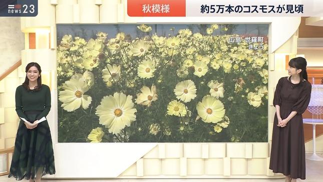 田村真子 news23 2