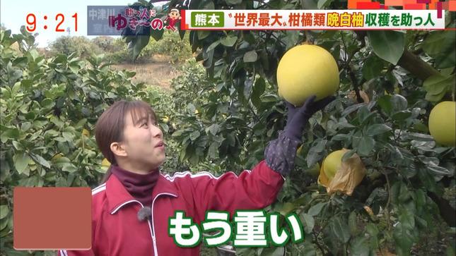 山本雪乃 モーニングショー 3