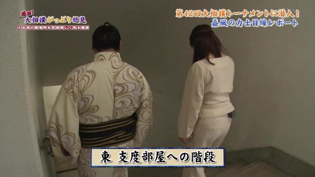 唐橋ユミ 感動!大相撲がっぷり総見 4