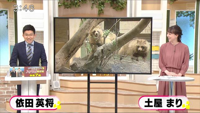 土屋まり イチオシ!! 1