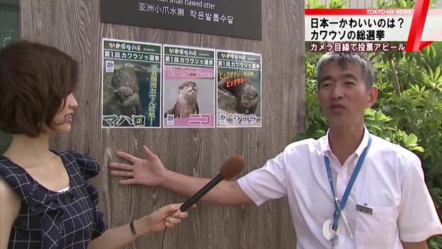 牧野結美 TOKYO MX NEWS 7
