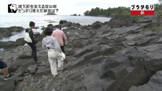 林田理沙 ブラタモリ 11