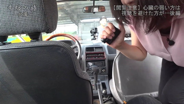 虎谷温子 辛坊の旅 5