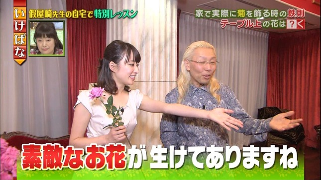 枡田絵理奈 いっぷく! プレバト!! 体育会計TV 09