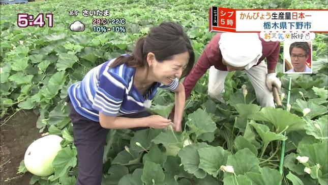 福岡良子 ニュースシブ5時 13