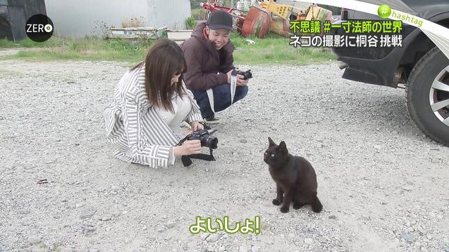 桐谷美玲 NewsZero 8