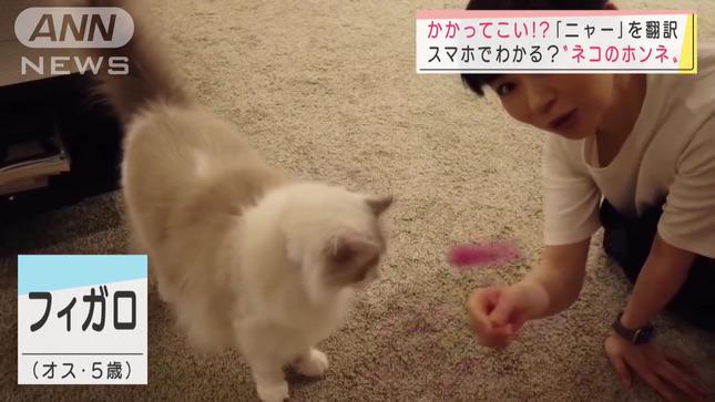 松尾由美子 スーパーJチャンネル 9