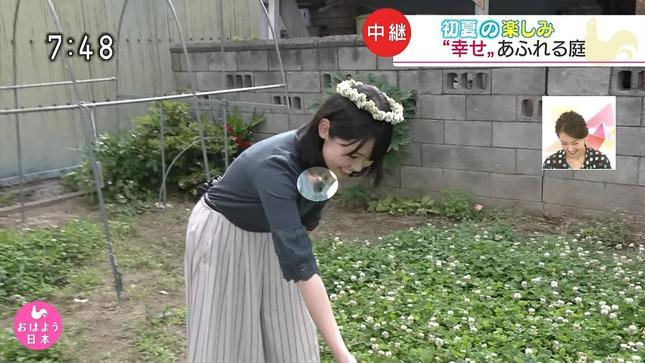武田涼 おはよう日本 6