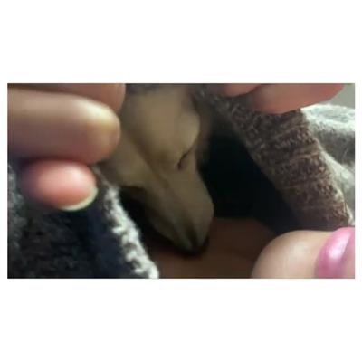 小林由未子 Instagram 13