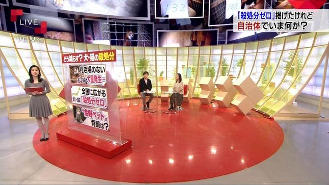 田中泉 クローズアップ現代+ 8
