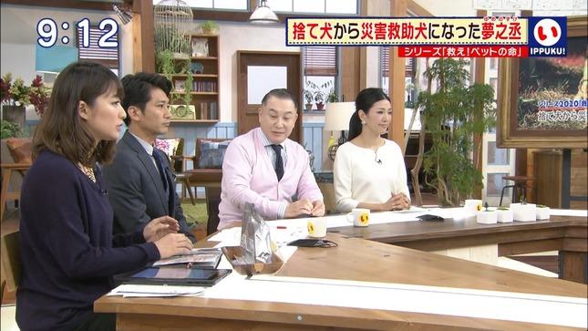 枡田絵理奈 クイズ☆アナタの記憶 いっぷく! プレバト!! 14