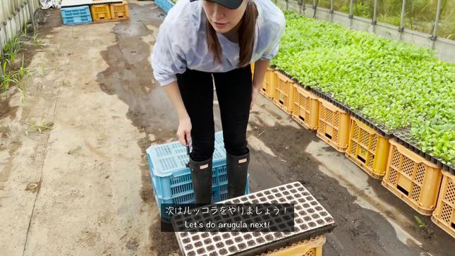 トラウデン直美農業チャンネル 4