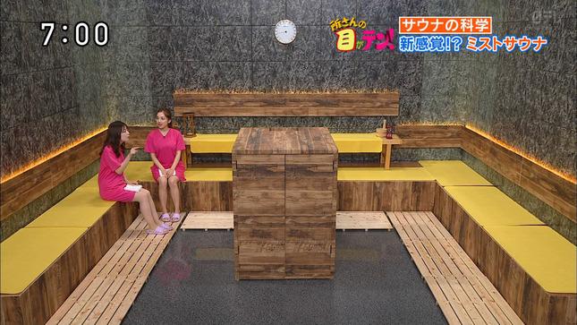 佐藤真知子 所さんの目がテン! 2