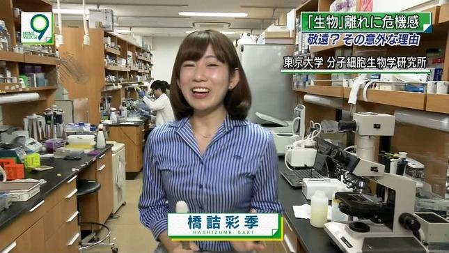 橋詰彩季 ニュースウオッチ9 2