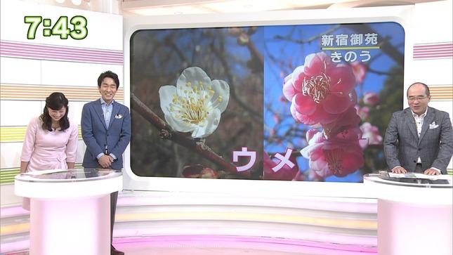 小郷知子 おはよう日本 クローズアップ現代+ 8
