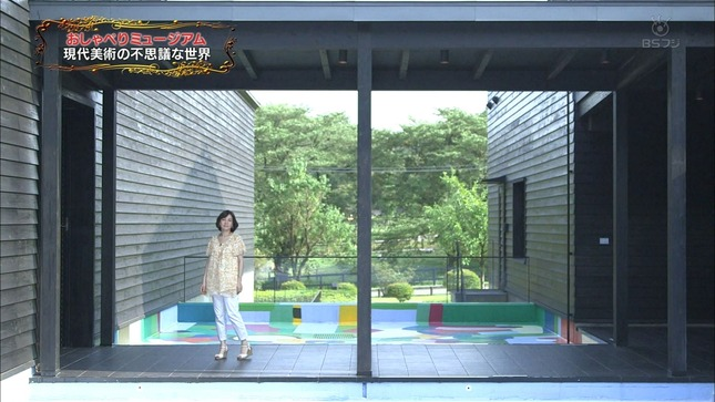 八木亜希子のおしゃべりミュージアム 11