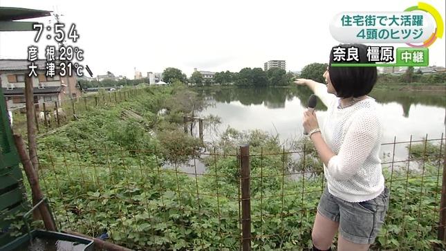 荒木美和 おはよう日本 11