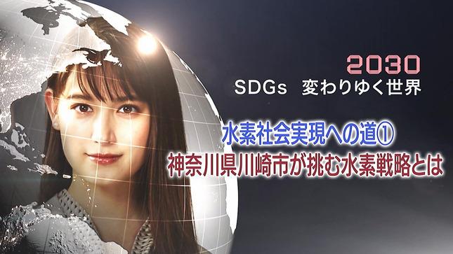 トラウデン直美 日経ニュースプラス9 7
