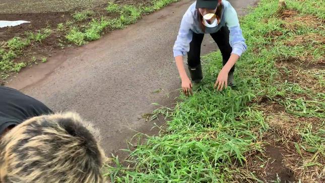 トラウデン直美農業チャンネル 24