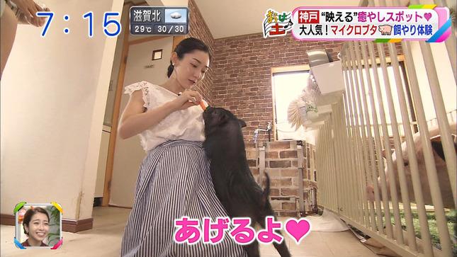 八塚彩美 おはよう朝日土曜日です 1