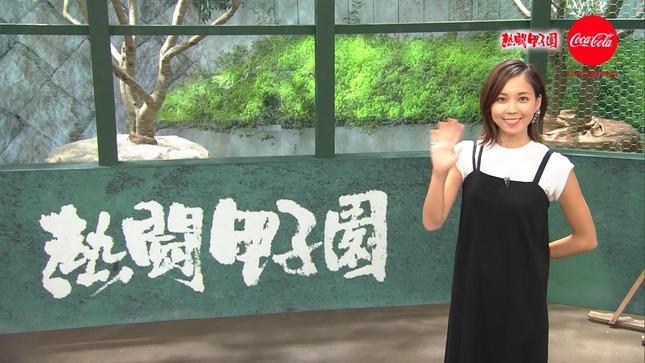 ヒロド歩美 熱闘甲子園 12