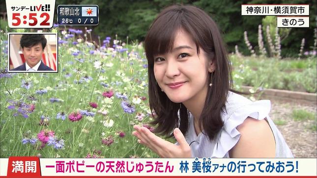 林美桜 サンデーLIVE!! 14