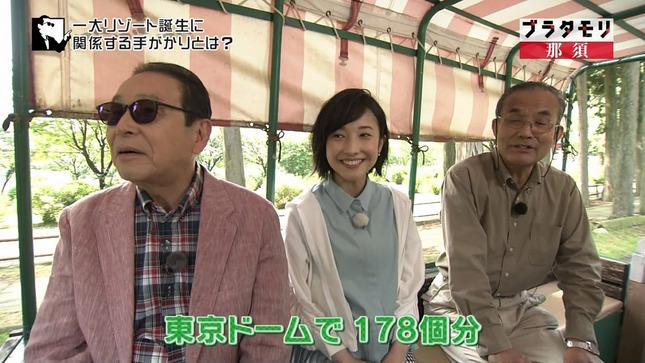 林田理沙 ブラタモリ おはよう日本 6