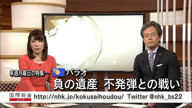藤田真奈美 国際報道2014 05