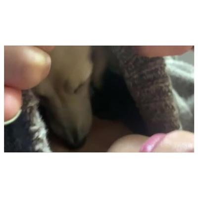 小林由未子 Instagram 12