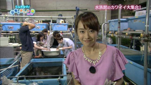 片山千恵子 こんにちは!動物の赤ちゃん夏2016 NHKニュース 15