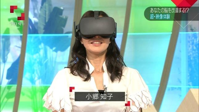 小郷知子 おはよう日本 クローズアップ現代+6
