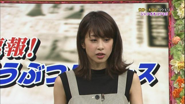 加藤綾子 世界へ発信!SNS英語術 天才!志村どうぶつ園 11