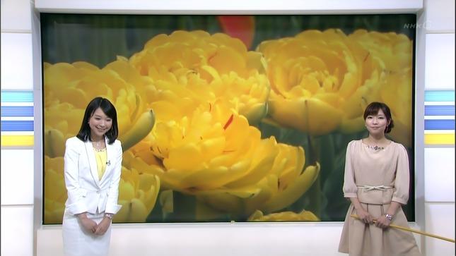 守本奈実 NHKニュース7 寺川奈津美 03