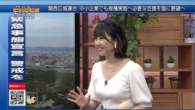 塩見泰子 ニュースきん5時 11