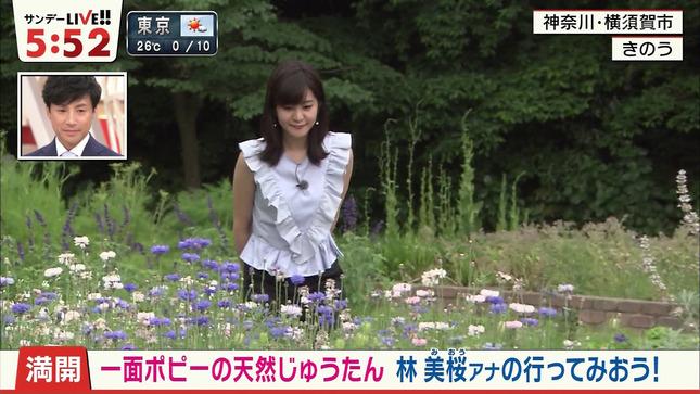 林美桜 サンデーLIVE!! 15