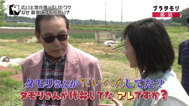 林田理沙 ブラタモリ おはよう日本 8