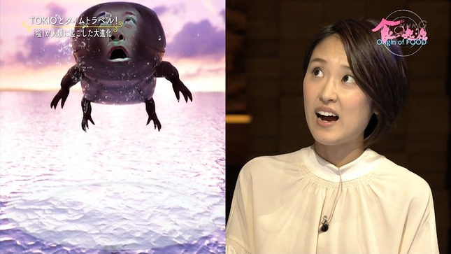 近江友里恵 あさイチ 食の起源 11