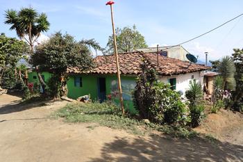 マリア農園3