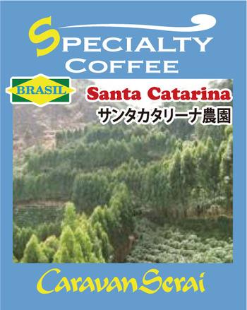 catarina_s