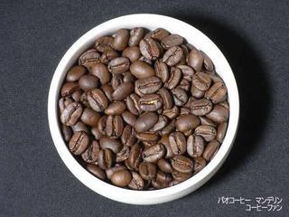 パオコーヒー1-7マンデリン