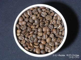 コーヒーのLOOK1-8キリマンジャロAA