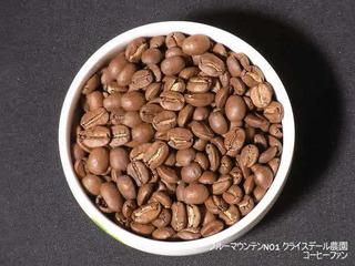 ヒロコーヒー1-14ブルーマウンテンNO1クライスデール農園
