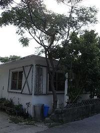 デジカメ画像沖縄旅行 033