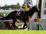 161015_tokyo11-winner